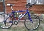 vendo bicicleta rodado21, exelente estado.