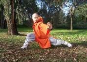 Kung fu shaolin kuan traditional boxing