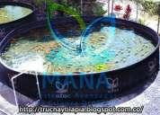 Cultivos acuícolas orgánicos