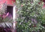 Martínez ph fondo 3 dormitorios, terraza