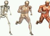 Excelente clases particulares de biologia y anatomia