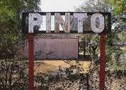 Campo agrícola en venta en pinto, aguirre, santiago del estero