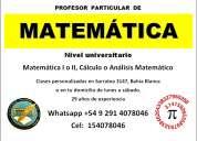 Profesor particular de matemática nivel universitario en bahía blanca