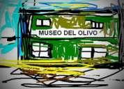 Campo premiun 3 hs con riego, olivos, sobre dos calles en chachingo