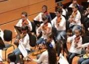 Clases de violin viola violonchello desde el año 1984