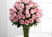 Flores buenos aires argentina: flores a domicilio, envio de arreglos florales, plantas y ros