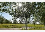 Haras de funes,a 15 min del centro de rosario-terrenos de 1000 m2 a u$s50000