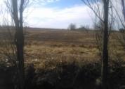 8 hectáreas sobre asfalto en la marzolina gral alvear mendoza