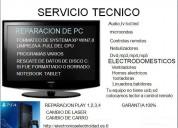 servicio tecnico 2009
