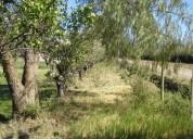 Vendo terreno finca en san rafael