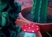 Hongos para decorar tu jardin