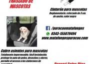 Excelente kit de seguridad, matafuegos y seguridad en mascotas