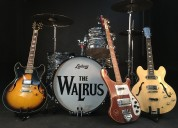 The walrus clasic rock and roll band