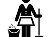 Servicios limpieza finales obras 43072813 - 1538301943 las 24hs