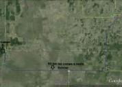 Vendo 175 hectareas excelente suelo agricolaganad