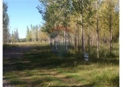 Lote bosques de capiz san carlos mil metros.