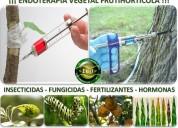 Recupere sus árboles (endoterapia vegetal)