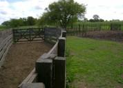 Campo ganadero en venta 345 hectáreas.