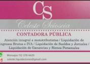 Contador publico uba