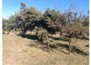 Merlo lotes las moreras ii solares 100 u d 40 000 terreno en venta 2 m2