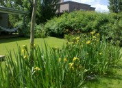 Paisajismo zona norte diseño de jardines