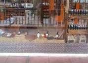 Fondo de comercio vinoteca y articulos regionale 100 consulte precio fondo de comercio 150 m2