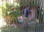 Servicio de jardinería j&n