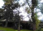 Casa quinta de epoca en buenas condiciones edilicias sobre lote de 20 x 30 en paso del en moreno