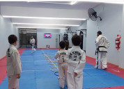 Taekwondo itf kids villa urquiza arismendi 2686