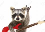 Clases de guitarra y bajo zona oeste