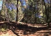 Terreno en pinar del golf sobre calle los zorzales en monte hermoso