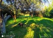 Pequeno campo ecologico de 7 has en villa larca merlo san luis en chacabuco